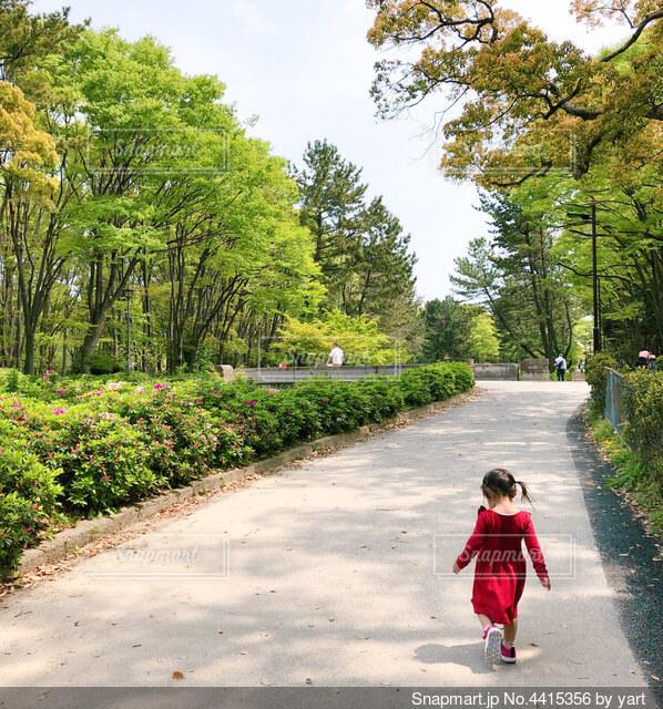 小道を歩いている小さな女の子の写真・画像素材[4415356]