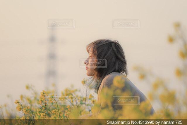 菜の花と女の子の写真・画像素材[4313990]