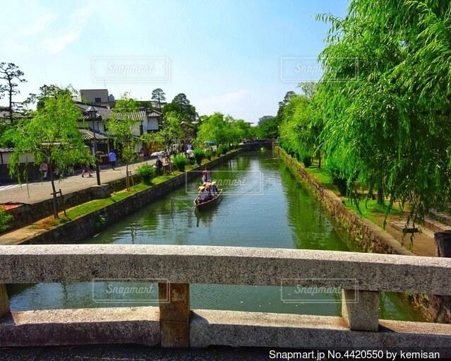 倉敷美観地区の川と青柳の写真・画像素材[4420550]