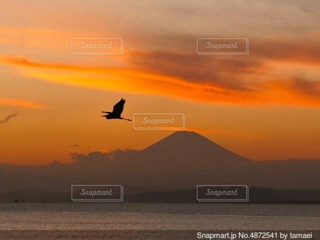 夕焼けと富士山の写真・画像素材[4872541]
