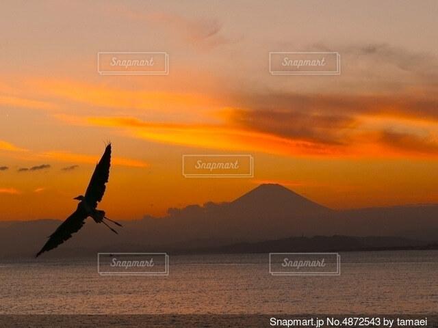 夕焼けと富士山の写真・画像素材[4872543]
