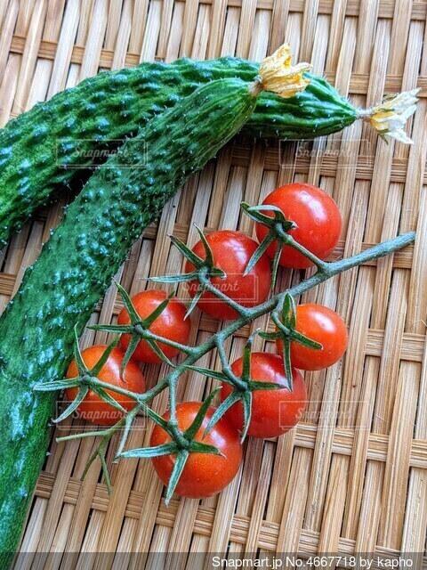 花がついたままのトゲトゲ胡瓜と、枝が付いたままのプチトマトの写真・画像素材[4667718]