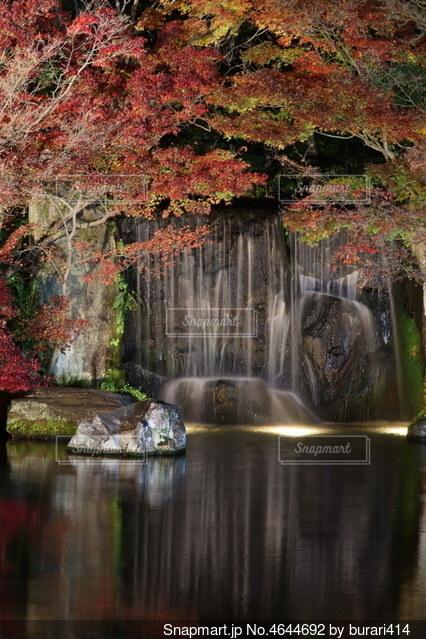 秋の風物詩の写真・画像素材[4644692]