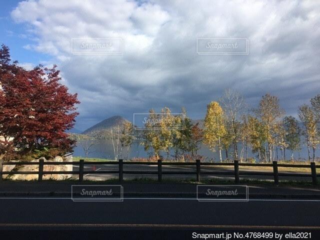 洞爺湖に面する道路の写真・画像素材[4768499]