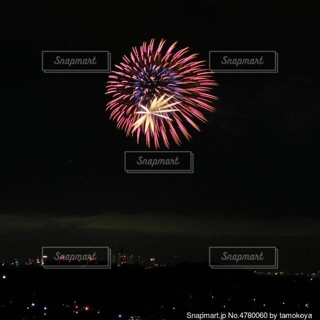 花火の写真・画像素材[4780060]