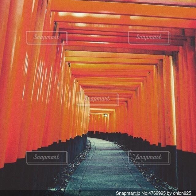 伏見稲荷の写真・画像素材[4769995]