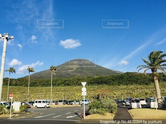山とヤシの木 八丈島の写真・画像素材[4872304]