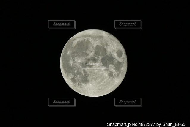 中秋の名月の写真・画像素材[4872377]