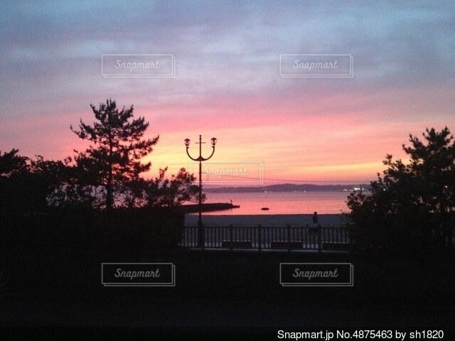 ある公園の夕陽の写真・画像素材[4875463]