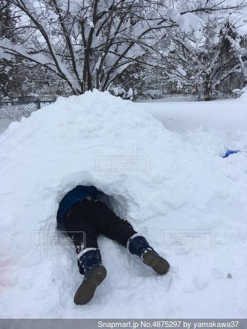 かまくら作りに必死な息子が雪穴堀中の写真・画像素材[4875297]