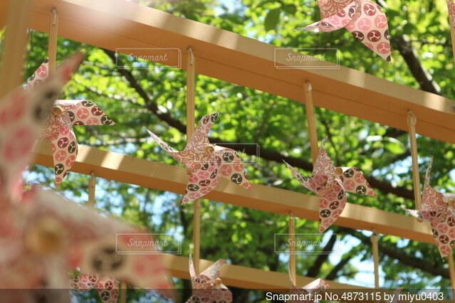 花のクローズの写真・画像素材[4873115]