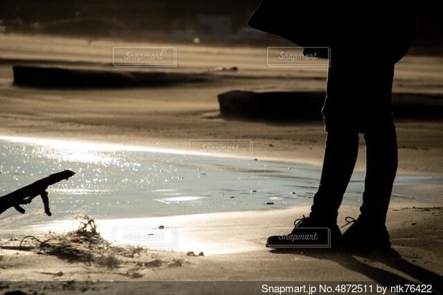 黄金の海と眺める君の写真・画像素材[4872511]