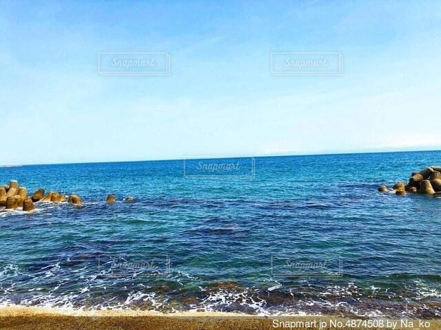 海の隣の水域で泳ぐ犬の写真・画像素材[4874508]