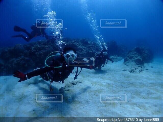 海底散歩の写真・画像素材[4876310]