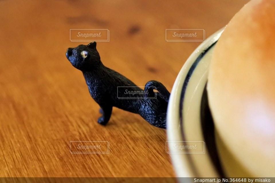 猫の写真・画像素材[364648]