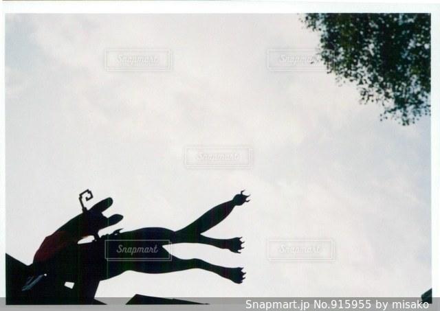 空を飛んでいる飛行機の写真・画像素材[915955]