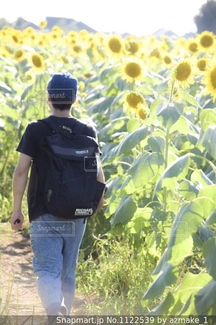草の中に立っている小さな男の子の写真・画像素材[1122539]