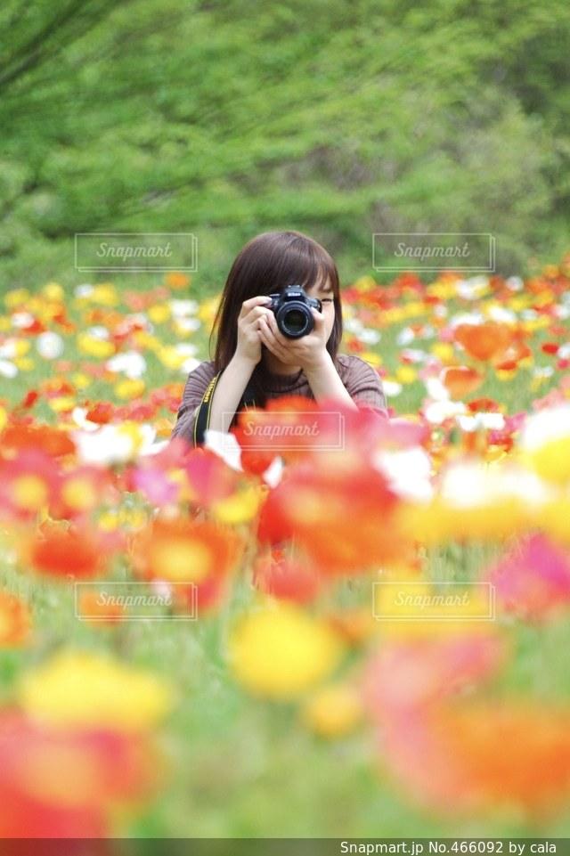 花畑 - No.466092
