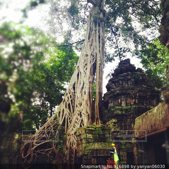 カンボジアの遺跡の写真・画像素材[916898]