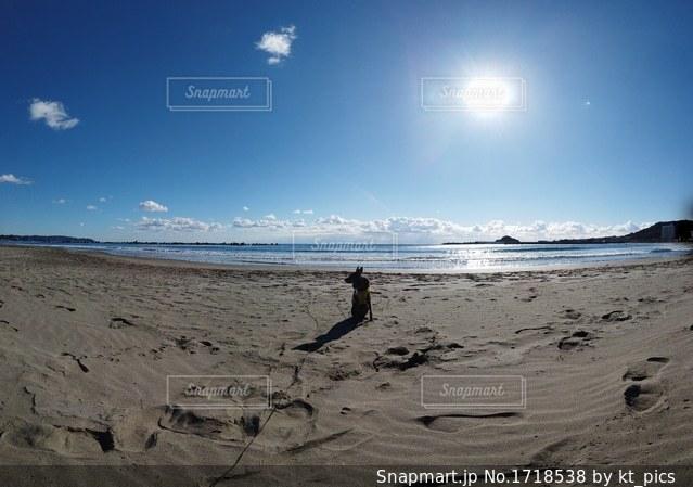 砂浜の上に立つ人々 のグループの写真・画像素材[1718538]