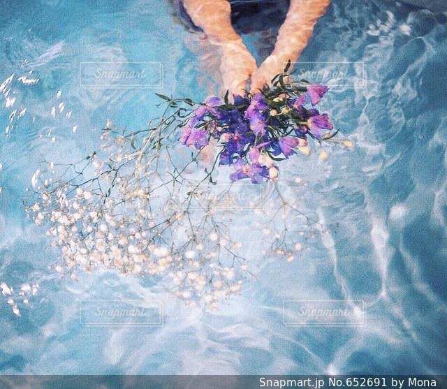 花の写真・画像素材[652691]