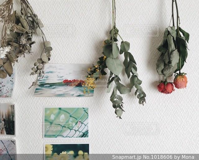 テーブルの上の花の花瓶の写真・画像素材[1018606]