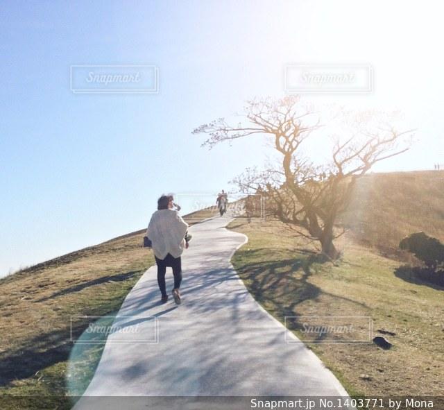 大室山のの写真・画像素材[1403771]