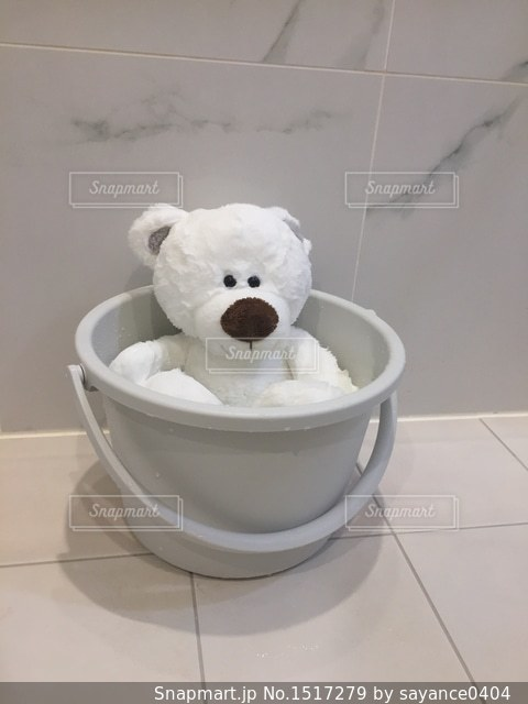 ぼくのお風呂たいむの写真・画像素材[1517279]