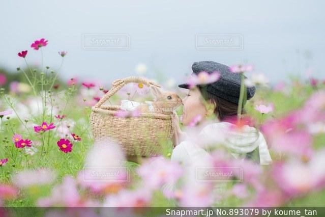 近くの花のアップの写真・画像素材[893079]