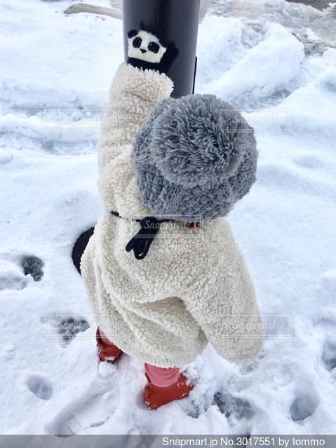お気に入りの手袋でお散歩の写真・画像素材[3017551]