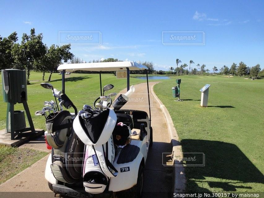 ゴルフの写真・画像素材[300157]