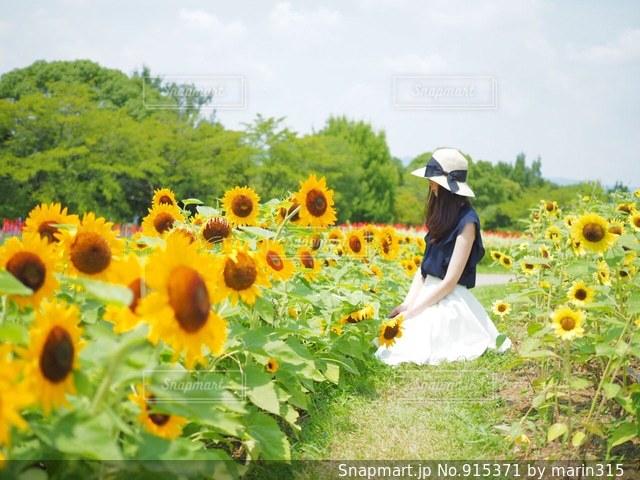 ひまわりと白スカート女子。の写真・画像素材[915371]