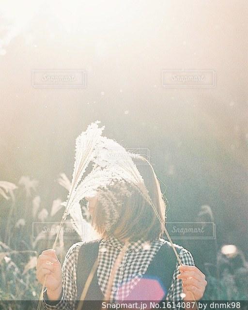 陽だまりの彼女の写真・画像素材[1614087]