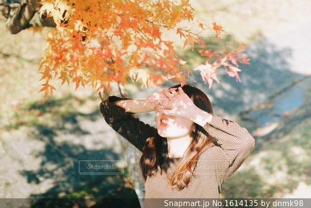 秋満喫!の写真・画像素材[1614135]