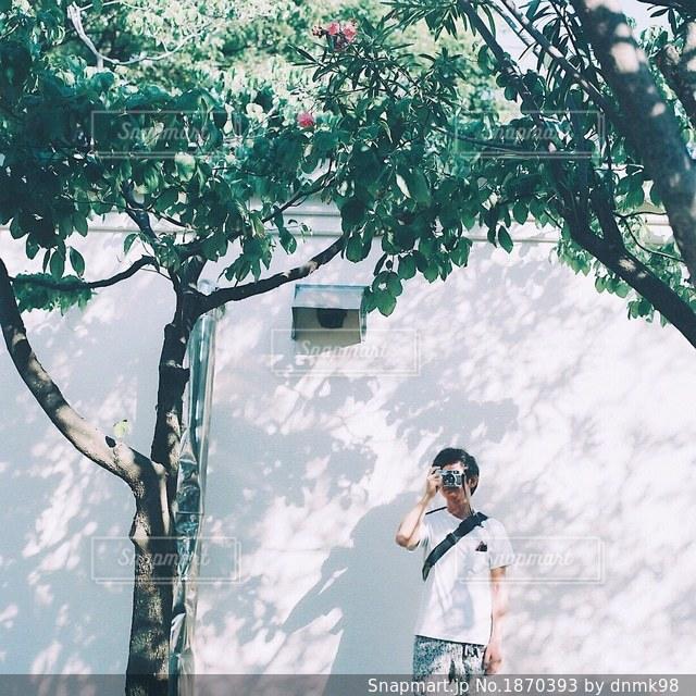 木の隣に立っている人の写真・画像素材[1870393]