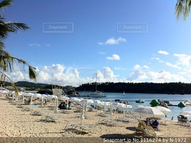 砂浜のビーチでヤシの木のグループの写真・画像素材[1116274]