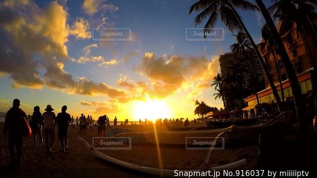 背景の夕日とヤシの木のグループの写真・画像素材[916037]