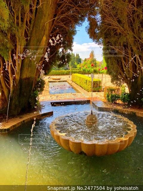 春のアルハンブラ宮殿庭園の写真・画像素材[2477504]