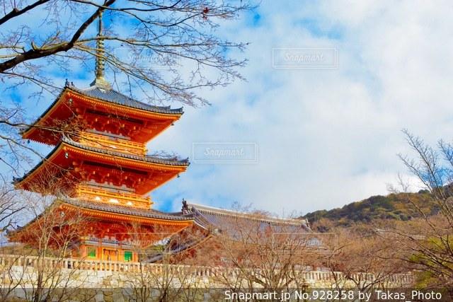 建物の前に大きな木の写真・画像素材[928258]