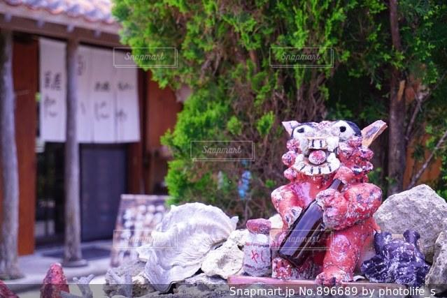 テーブルに座っているぬいぐるみの動物のグループの写真・画像素材[896689]