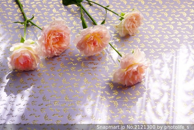 花のクローズアップの写真・画像素材[2121300]