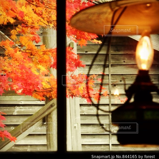 ノスタルジックな秋の写真・画像素材[844165]