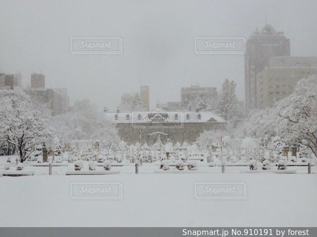 冬の嵐の写真・画像素材[910191]