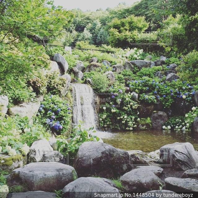 滝ですの写真・画像素材[1448504]