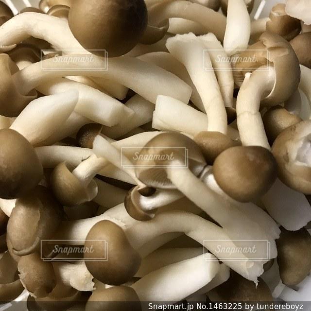 食欲の秋の写真・画像素材[1463225]