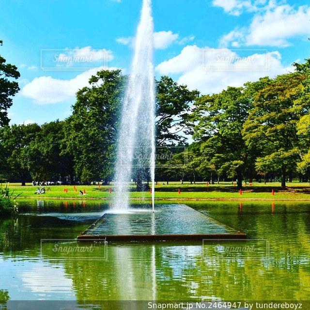 公園の噴水の写真・画像素材[2464947]