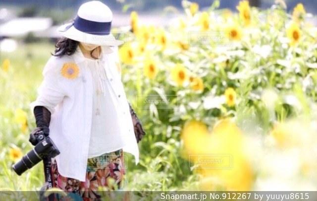 ひまわり畑と女性の写真・画像素材[912267]