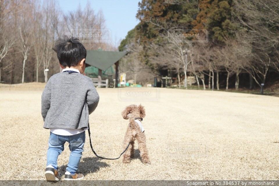 公園 - No.384637