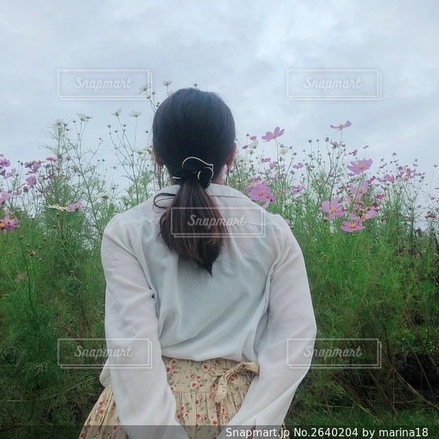 コスモスと女の子の写真・画像素材[2640204]