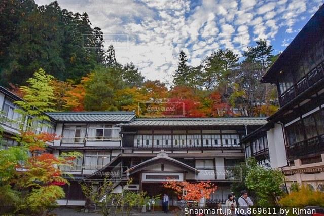 背景の木と家の写真・画像素材[869611]